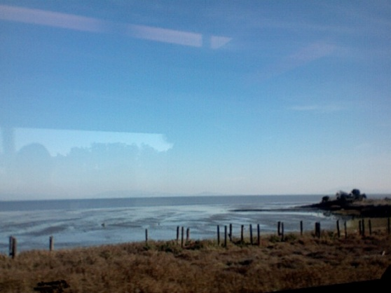 The Bay, from the Train