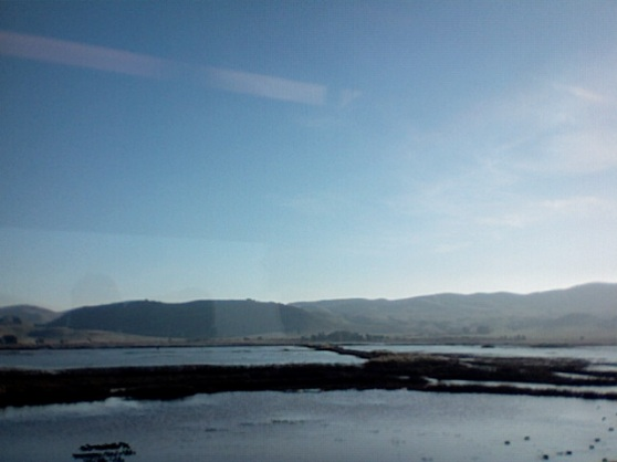 The Delta, from the Train