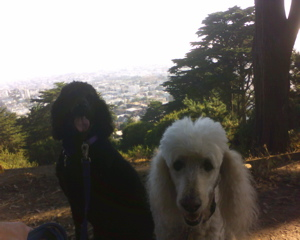Sandy and Pepper in SF